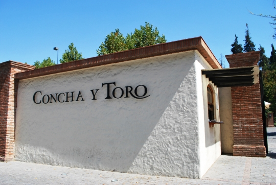 caso concha y toro harvard Toro co sno risk program case solution, toro was a promotion in which purchasers of their snow blower would get a refund if harvard business concha y toro.