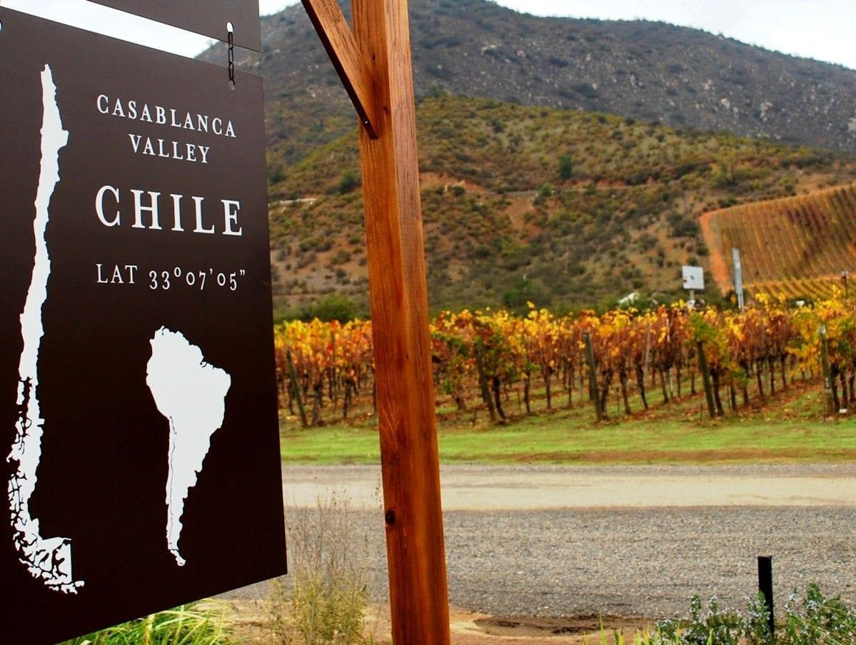 Valle de Casablanca Chile, vinho , vinícola, LikeChile