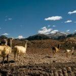 Valle del Arco-íris no Atacama