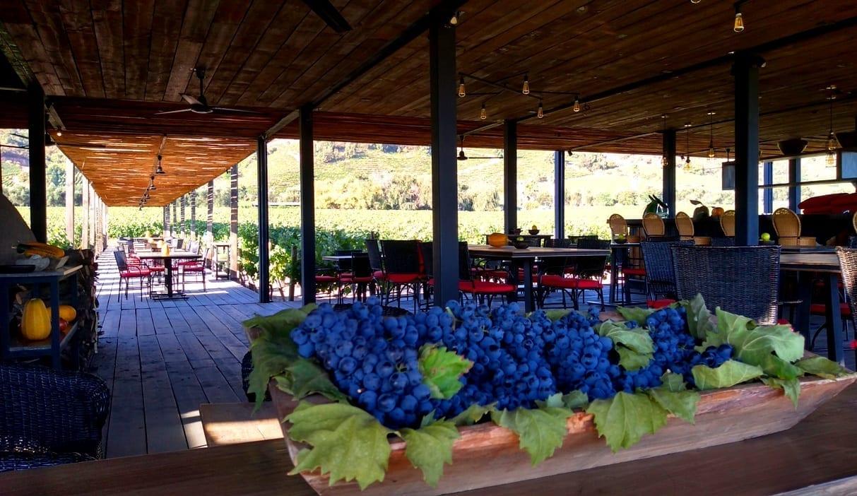 fuegos de apalta Tour em Santa Cruz, Colchagua Chile a rota dos vinhos, LikeChile, Vinho Chile